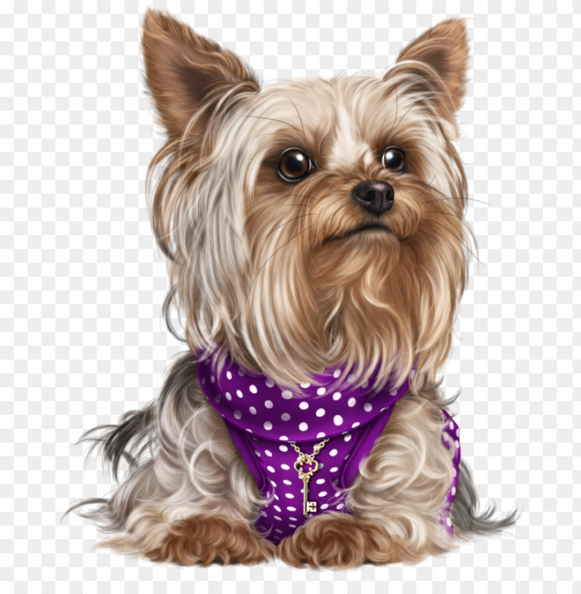 free PNG yorky, puppy images, cute puppies, cute dogs, dog cat, - figurinha cachorro PNG image with transparent background PNG images transparent