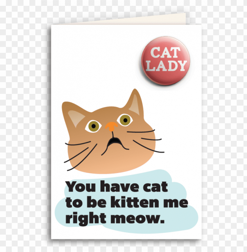 "free PNG ""you have cat to be kitten me right meow"" ua card and PNG image with transparent background PNG images transparent"